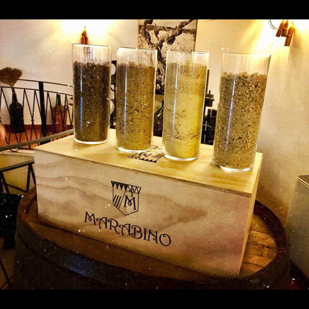 Marabino vini