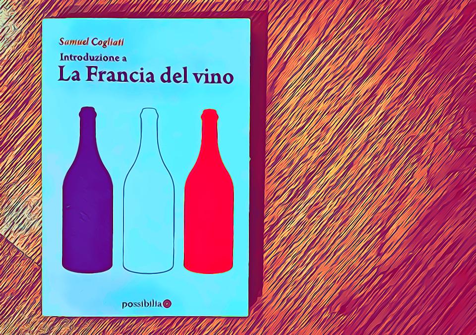 Introduzione alla Francia del vino